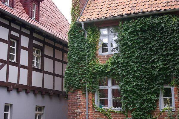 Reducir temperatura paredes en verano